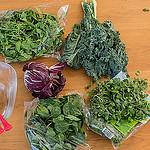 salad beauty